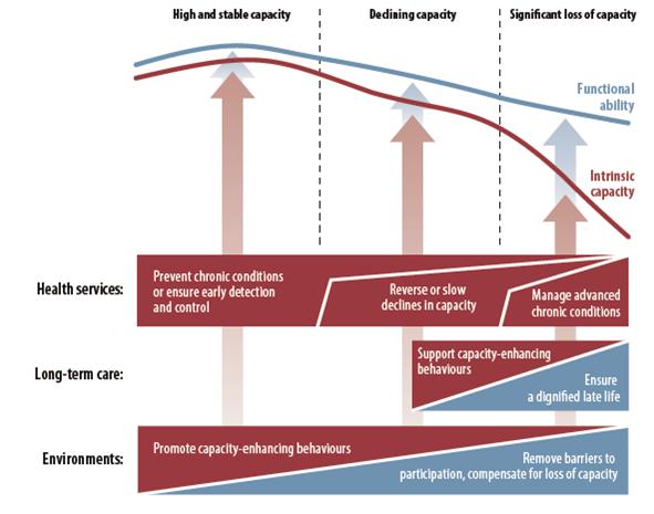 advantage-fragilidad-proyecto-investigacion-kronikgune-metodologia