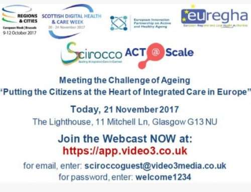 "The Basque Country participated in the ""Addressing the challenge of ageing – Putting the Citizens at the Heart of Integrated Care in Europe"" workshop held in Scotland"