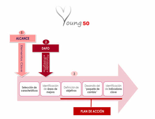 Implementation of the CARDIO 50 programme in the Young 50 pilot countries